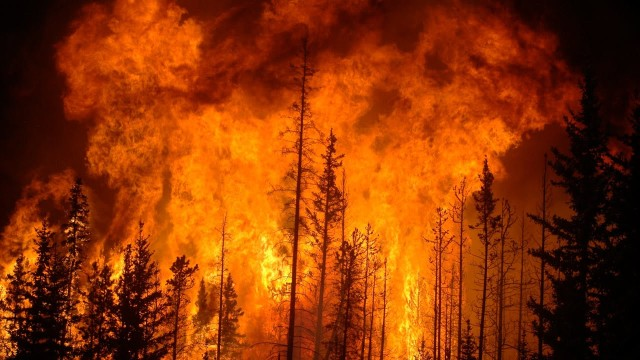 Top 25 Furious Wildfires