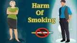 Top Harmful Effects of Tobacco – an Educational Video for Kids